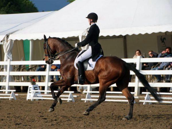 7. Platz Prix St. Georges Corinna May und Flovinio