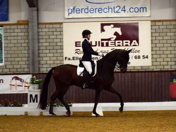 Corinna May mit Flovinio Platz 6 M*-Dressur