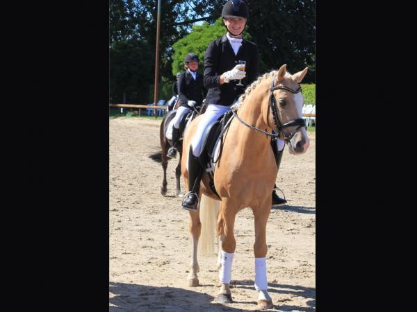 Bundeschampionat Qualifikation 5 jährige Ponys Deukalion B mit Kim Kubla