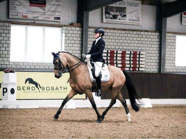Foto: Lia Müller mit Cipo beim Turnier am Stall Zur Lidne