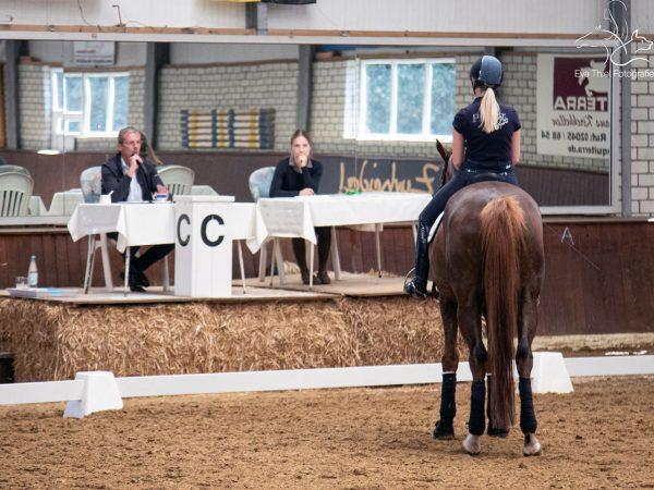 Reiterin steht vor Richtertisch - Test of Choice mit Hermann Bender